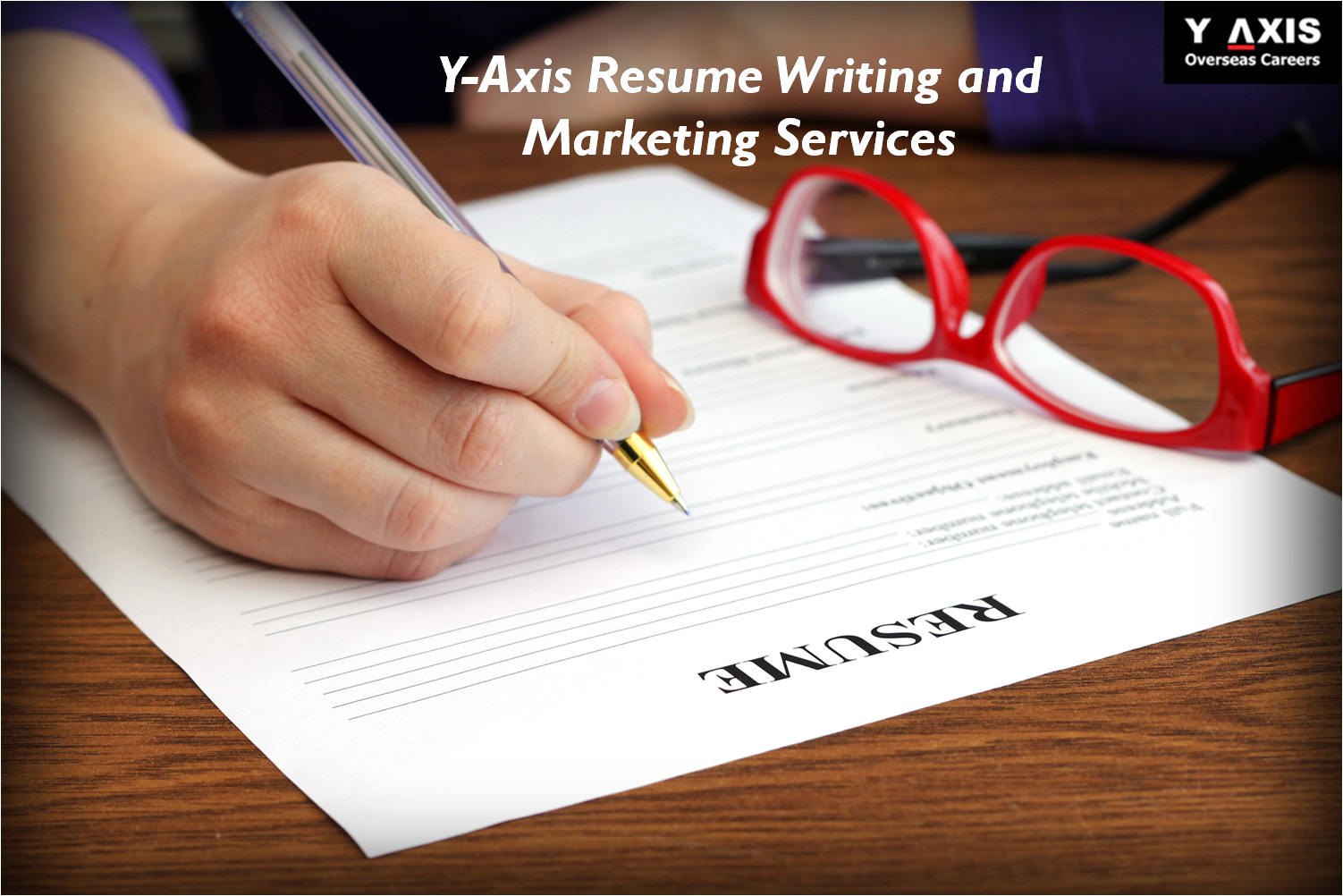 y axis reviews y axis resume and marketing services